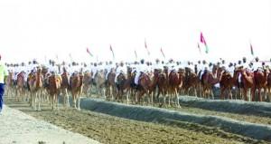 ختام مهرجان النعيمي التاسع عشر لعرضة الهجن والخيل