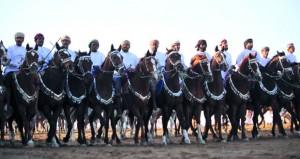 ختام فعاليات مهرجان الخيل بالكامل والوافي بمشاركة 80 فارسًا