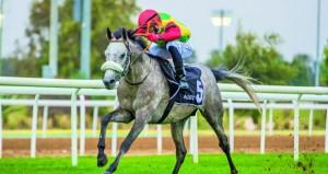 الحصان المبهر يحقق المركز الثاني على مضمار العين