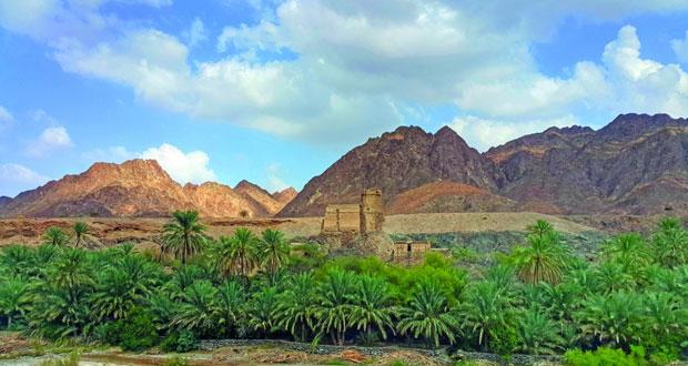 وادي الحواسنة بالخابورة أصالة التراث وتاريخ الأجداد والطبيعة الخلابة