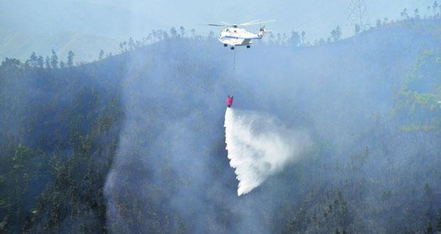 إخماد حريق غابات بجنوب غربي الصين
