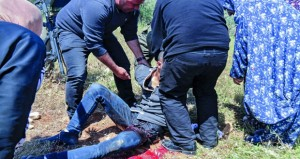قوات الاحتلال تسقط شهيدا وتعتقل 16 فلسطينيا بالضفة المحتل