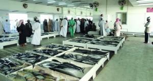 الأسواق السمكية: وفرة في المعروض وثبات بالأسعار