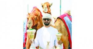 مضمر(النايفة) للهجانة السلطانية الفائزة بكأس جلالة السلطان المعظم لسباقات الهجن لعام 2019م