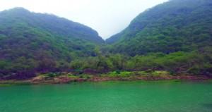 افتتاح مهرجان صلالة والطبيعة تزدان باللون الأخضر