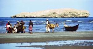 كتاب الباطنة ومسندم … تجسيد لقصة التحول من عمان الأمس إلى عمان الحديثة