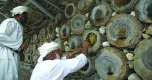 جمع العسل .. مهنة يمارسها العمانيون منذ القدم