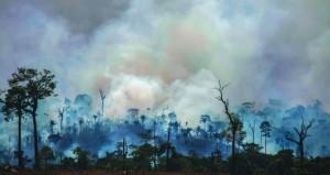 (حرائق الأمازون) : البرازيل تشترط تحديد سبل استخدام المساعدات الأجنبية