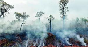حرائق الأمازون : الأمطار لن تخمدها لأسابيع .. والبرازيل ترفض مساعدات (السبع)