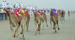 غدا .. انطلاق النسخة السادسة من فعاليات مهرجان الظافر لسباقات الهجن بميدان الأبيض