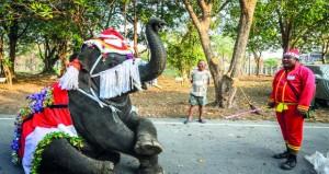 أفيال توزع هدايا (أعياد الميلاد) بمدرسة في تايلاند