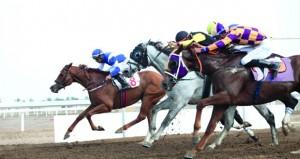 منافسة قوية يشهدها السباق الخامس لنادي سباق الخيل السلطاني بمضمار الرحبة ببركاء