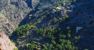 عدسات عمانية توثق زوايا الجمال في وادي بني خروص