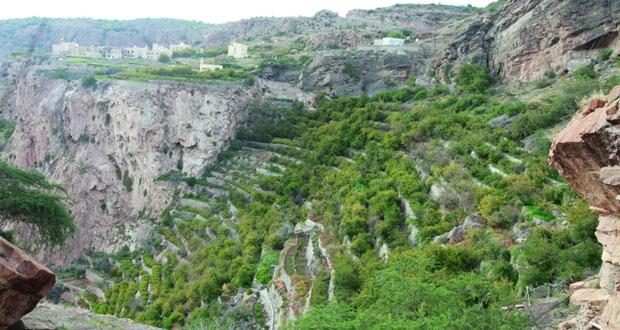 أكثر من 84 ألف سائح يزورون الجبل الأخضر في 6 أشهر يستقطب السياحة الأوروبية خلال فصل الشتاء