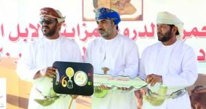 بيع 8 من الإبل المتميزة بأكثر من 350 ألف ريال عماني