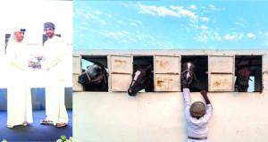 هيثم الفارسي يتوج بالمركز الثاني في المسابقة الفوتوغرافية الدولية للجواد العربي