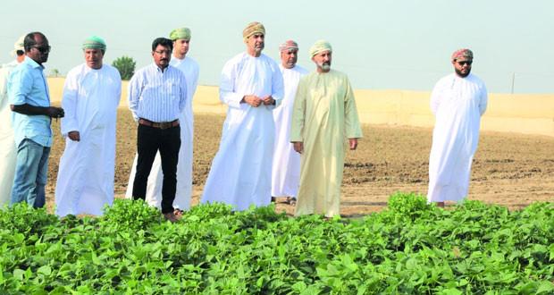 وزير الزراعة والثروة السمكية يتعرف على طرق الزراعة الحديثة بمزرعة الطاووس ببركاء