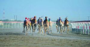 تواصل منافسات سباقات الهجن الأهلية بمضمار الفليج ببركاء في المهرجان السنوي السابع عشر