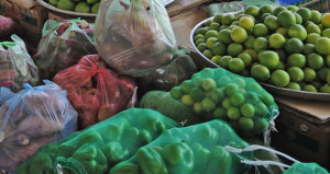 """الخضروات المحلية أقل سعراً وتفاوت القيمة للفواكه المستوردة بالسوق المركزي بحسب قائمة أسعار """" الزراعة والثروة السمكية"""""""