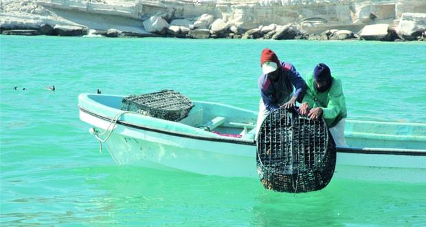 555 ألف طن إجمالي الأسماك المنزلة بالصيد الحرفي بالسلطنة بنهاية ديسمبر 2019