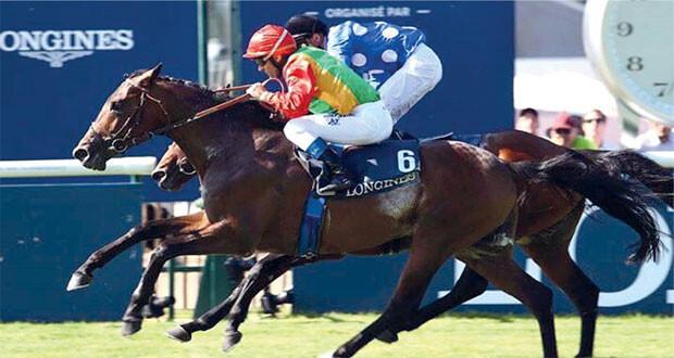 الحصان مربح يحصد المركز الأول على مضمار تولوز