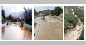 أمطار متفاوتة الغزارة بنزوى والرستاق وينقل