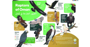 """جمعية البيئة العُمانية تقدم كتيبا جديدا حول """"الطيور الجارحة في عُمان"""""""