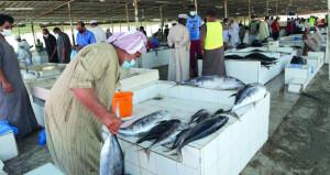 تراجع الأسعار في سوق الأسماك بالسيب بسبب وفرة المعروض