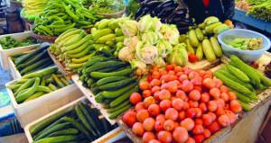 مطالبات بتخصيص أماكن للمنتجات الزراعية المحلية في المحلات والمراكز التجارية الكبيرة مع قرب موسم الحصاد الزراعي