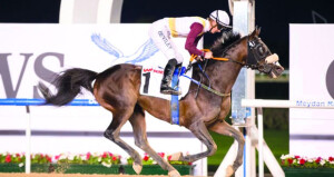 غدا الجمعة الخيول العمانية تنافس في سباق جوهرة الشيخ زايد العالمي