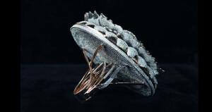 خاتم مرصع بـ12 ألف ماسة يدخل موسوعة جينيس