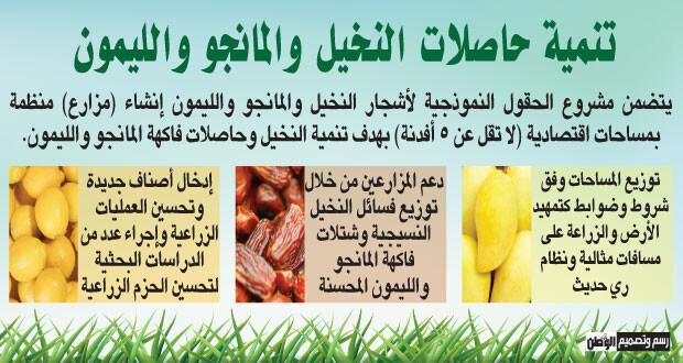 حقول نموذجية لأشجار النخيل والمانجو والليمون