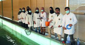 باحثون عمانيون ينجحون في استزراع سمك الباراموندي