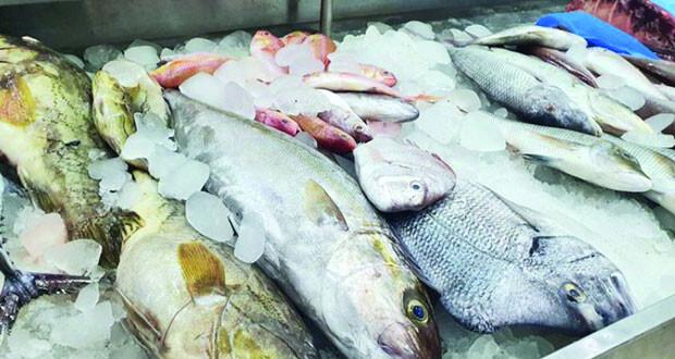 751 مليون ريال عُماني مساهمة قطاع الزراعة والثروة السمكية بجنوب الشرقية في إجمالي الناتج المحلي للسلطنة العام الماضي