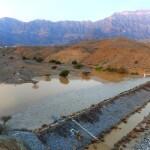 ارتفاع منسوب مياه الأفلاج وامتلاء السدود بالرستاق