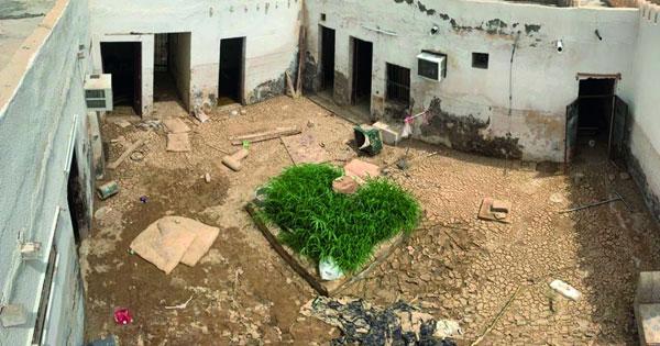 حملة «معـا من أجـل عمان 3» صيانة المنازل المتضررة من منخفض الحج
