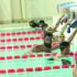 اتحاد السباحة ينهي الفحوصات الطبية والتطعيم ضد فيروس كورونا