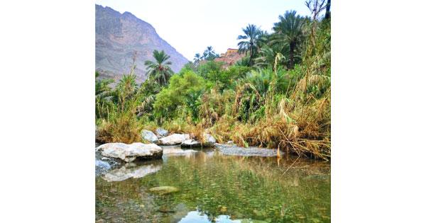 «العلياء».. ثراء طبيعي وتراث تاريخي
