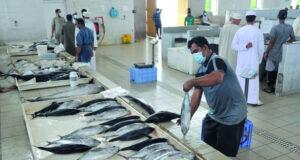 أكثر من 21 مليون ريال عماني قيمة الإنزال السمكي خلال يونيو الماضي