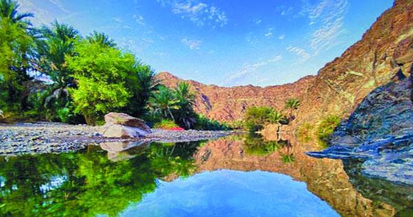 وادي الحيول.. لوحة طبيعية بديعة فـي محضة