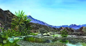 لوحات أفلح الراشدي تبحر فـي عالم الألــوان وتجسد تكوينات الطبيعة