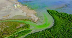 السلطنة تشارك دول العالم الاحتفال بيوم البيئة الإقليمي