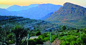 جبل السراة.. طبيعة خلابة ومناخ معتدل صيفا وشديد البرودة شتاء