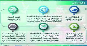 أكثر من 14 ألف وحدة مرجانية صناعية في السلطنة